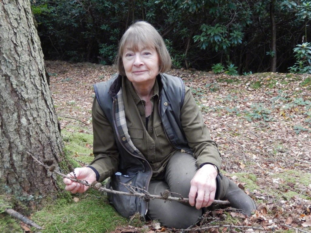 Lyn-Merrick wildlife artist