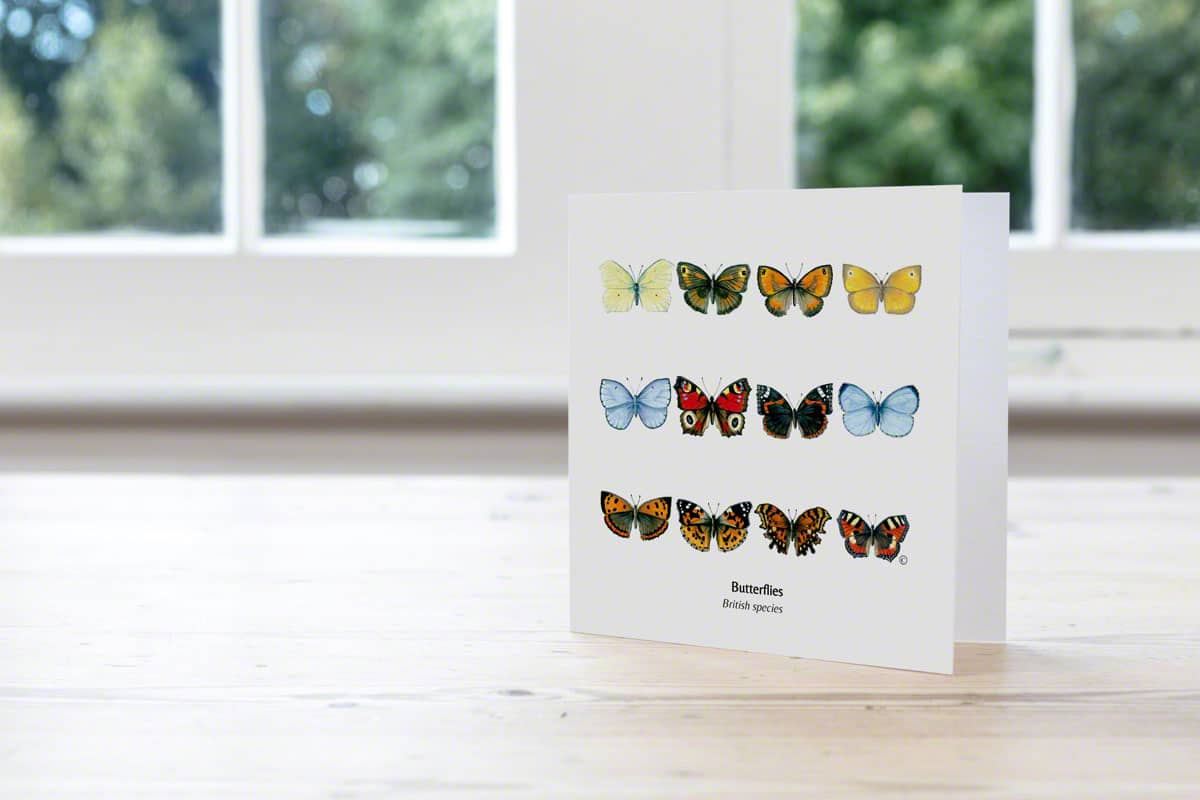 Mixed British Butterflies Cards