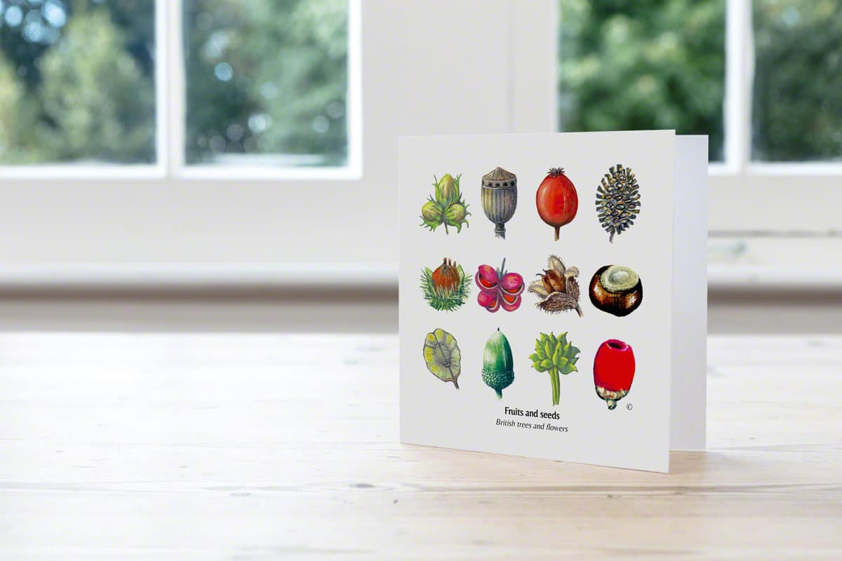 Mixed British Fruits & Seeds Card