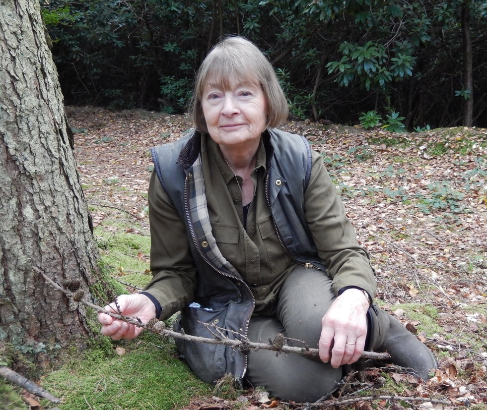 'Old Bats' Nature Blog, October 2017